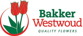 Bakker Westwoud